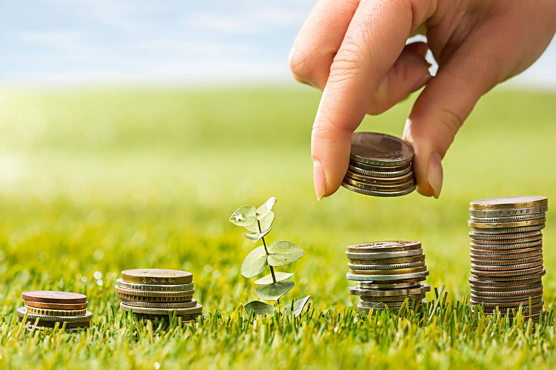Инвестиции в земеделски стопанства